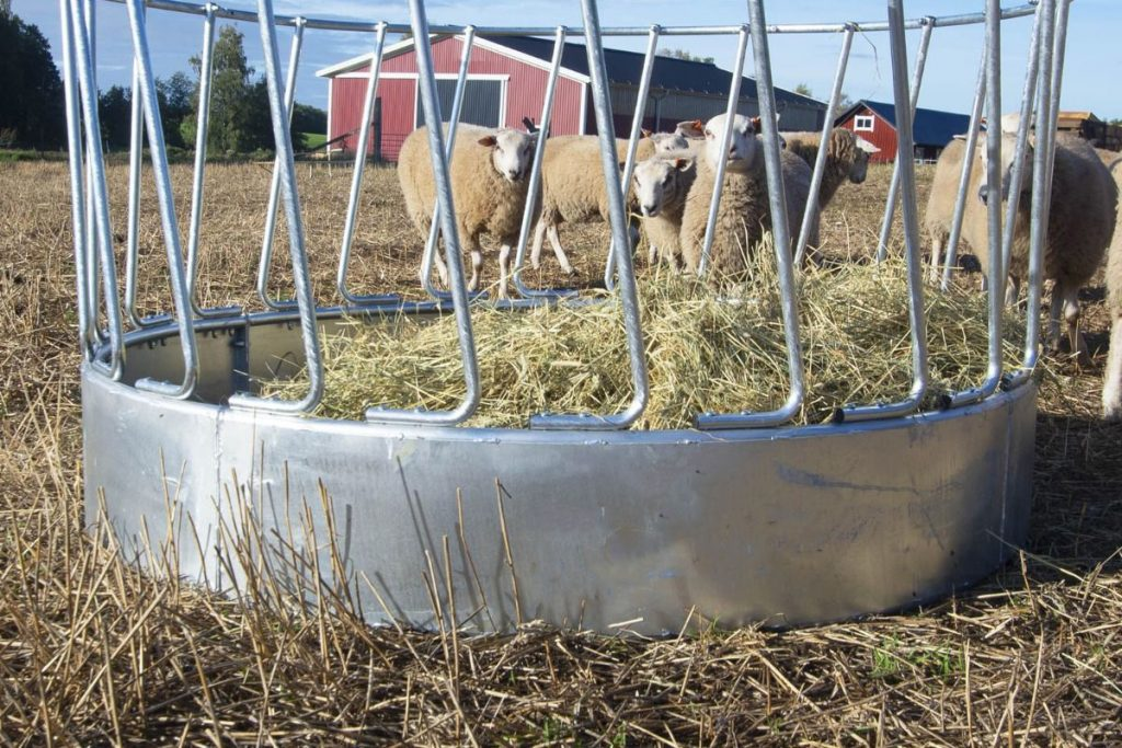 Skotte - Jordbruk Foderhäck för får hästar kor